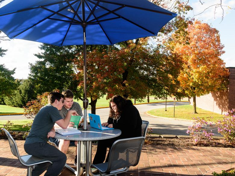 Students study on a patio with fall leaves behind them