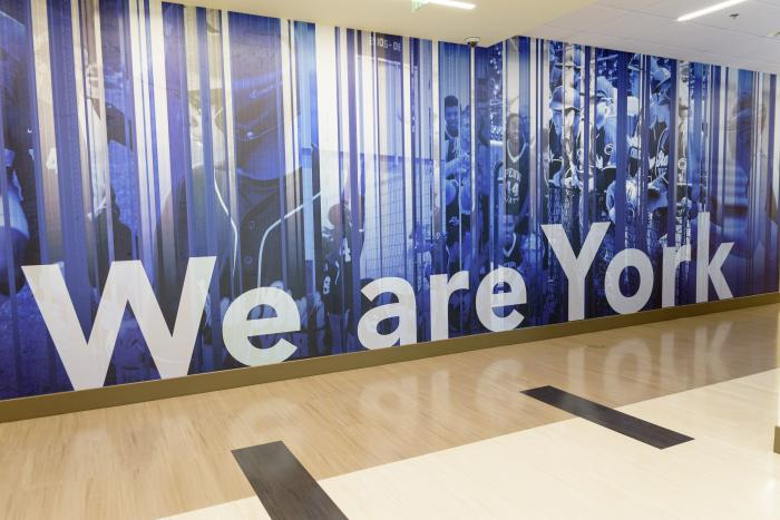 "A highly stylized mural with photos and the text ""We are York"""